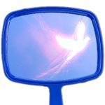mirror for website